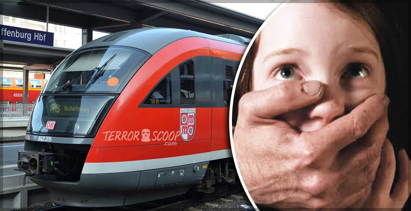 Germany---Muslim-migrants-attempt-to-rape-young-woman-in-train-toilet