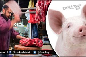 UK-Muslim-Halal-Butchers-Charged-With-Animal-Cruelty-in-Bradford