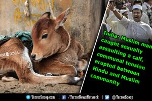 India-Muslim-man-caught-sexually-assaulting-a-calf-,-communal-tension-erupted-between-Hindu-and-Muslim-community