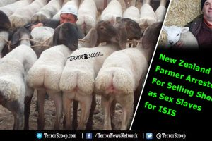 New-Zealand-Farmer-Arrested-For-Selling-Sheep-as-Sex-Slaves-for-ISIS-Islamic-Terrorist-Group